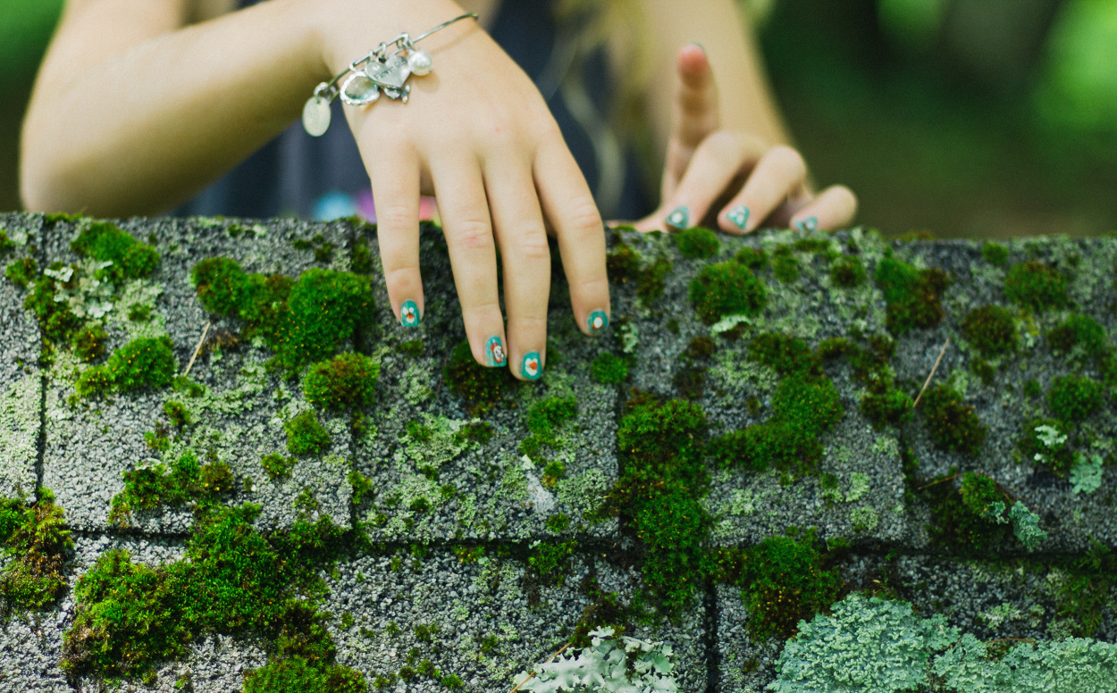 Image Result For Moss On Roof